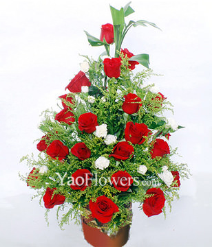 33 Red Roses,Fugui Bamboo, White Carnations