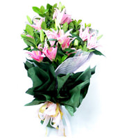 6 Pink Lilies
