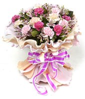 6 pink carnations,6 purple carnations,6 Lace Carnation