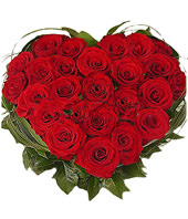 25 red roses,heart-shaped