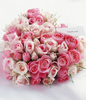 66 Pink Rose in Heart-Shaped
