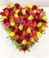 66 multi coloured roses