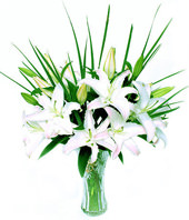 5 White(pink) Lilium with baby's breath