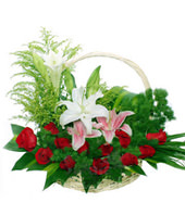 12 Red Roses,White Lily,Pink Lily,Brazil