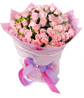 99 Pink roses with rich green foliages