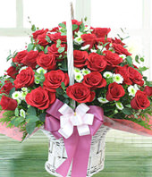 66 red roses, aster, with basket