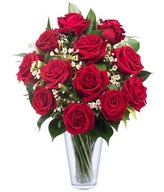 Love Knows No Frontiers: 15 Red Roses