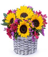 Bundle of joy: Sunflowers, limonium, alstroemeria