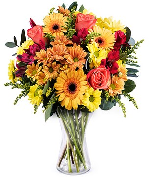 Mango: orange and yellow gerberas