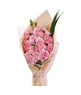 22 pink carnations and greens