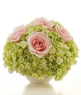 Pink roses and hydrangea in a vase