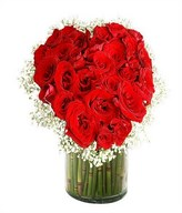3 Dozen of Red Roses with Fillers in a vase