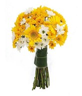 Yellow Gerberas, Yellow and White Daisies in a bouquet