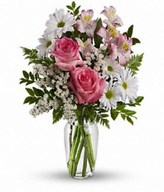 pink roses, pink alstroemeria, white daisy