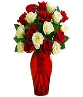 A bouquet of one dozen premium red and white roses with fillers