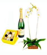 White Orchid, Sparkling Wine & Exotic Chocolates