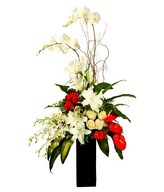 Flower arrangement with Phalaebnopsis Orchid, White roses, Anthurium, and fillers in a vase
