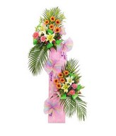 Congratulatory stand of gerberas, lilies and leaves