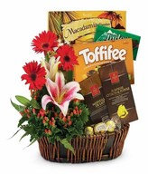 Assorted Chocolates & Arrangement of lilies and gerberas in a basket