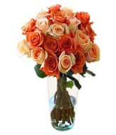 Dozen of our orange and peach roses in Bouquet