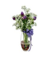 10 Purple Tulip In Glass Vase