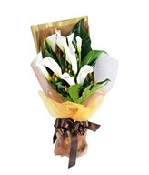 10 Calla Lillies in a Bouquet