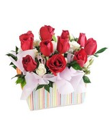 10 Red Roses with White Pom in a Box