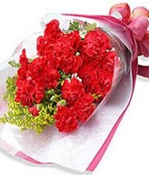 10 Stem of red Carnation in Bouquet