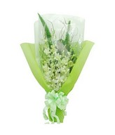 Bouquet of 10 stalks White Orchid