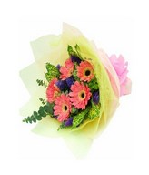 5 Stalks Pink Color Gerbera Hand Bouquet
