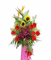 Bird Of Paradise, Red Gerbera, Red Orchid & Sunflowers