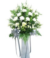 Arrangement of White Chrysanthemum and White Chrysan Pom-poms