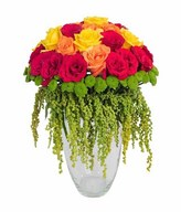 Red rose, yellow rose, orange rose, amarantus, Green Puma in glass vase