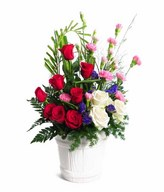 Arrangement of Red and white roses, with Pink Carnation and Fillers in White Ceramic Vase