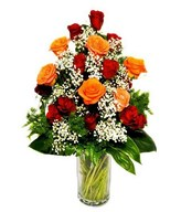 18 Red & Orange Roses in a Vase