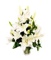 White Lilies Arrangement in Vase