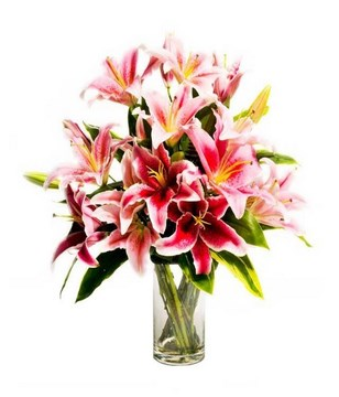 Table Arrangement of Pink Lilies