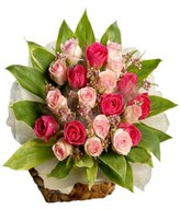 24 Dark pink and light pink roses hand bouquet