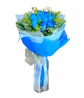 12 Blue Roses Hand Bouquet