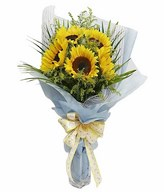 5 Sunflowers Hand Bouquet