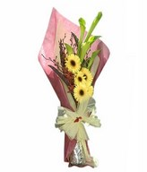Green calla lilies with cream Gerberas and Anne Black