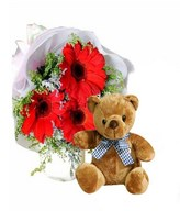 3 Red Gerberas with Fillers and Teddy Bear