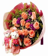12 Pink Roses with Couple Bears and Fillers