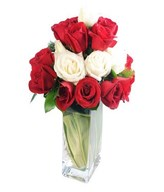 Vase Arrangement of Red & White Roses