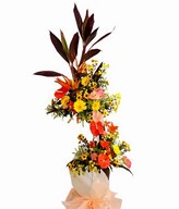 This perfect stand of Birds-of-Paradise, Anthurium, Daisies and Pompom