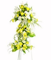 Flower Arrangement of White & Yellow Flowers - Anthurium, Daisy, Pompom & greens