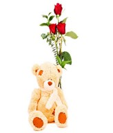 Bouquet of 3 Red Roses with Plush Bear