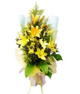 Yellow Lilies with Foliage