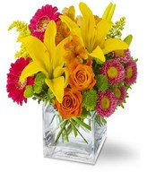 Basket of colorful gerberas, lilies and buttons