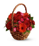Basket of red roses, red gerberas and red carnations